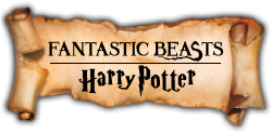 FANTASTIC BEASTS HarryPotter